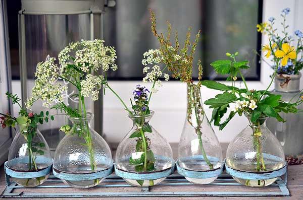 dicas de vasos