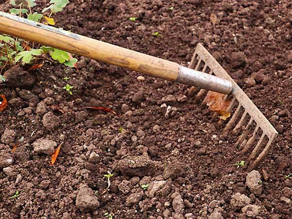 Quais os benefícios da plantação com substrato