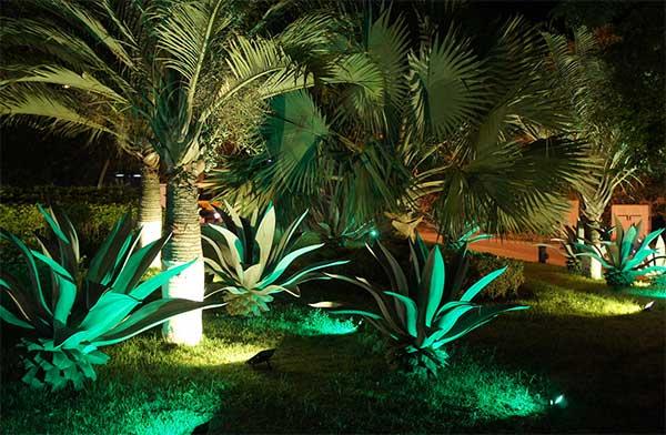 luzes de led no jardim