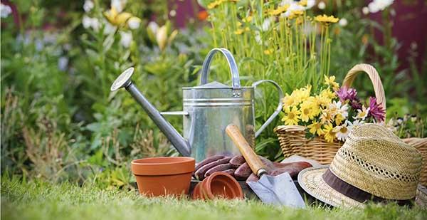 ferramentas jardinagem enferrujadas 1