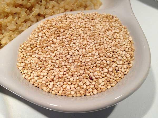 quinoa organica